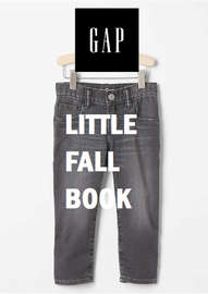 Little Fall Book