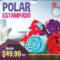 Polar Estampado